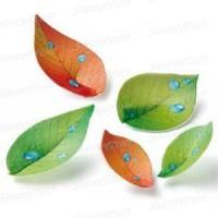Вафельный лист (лето-осень) 20шт