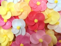 Вафельные цветы (флоксы микс) 10шт