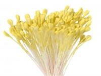 Тычинки для цветов крупные (бледно-лимонные) 25шт