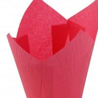 Капсулы тюльпан (темно-розовая) 10шт
