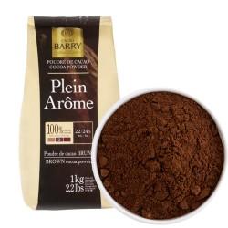 """Какао-порошок алкализованный """"Plein Arome"""" 22-24% 1 кг"""